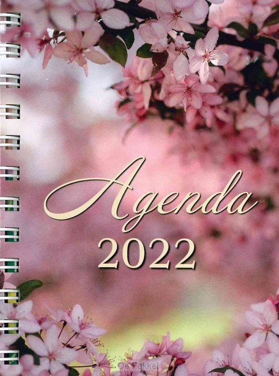 Agenda candle lights 2021